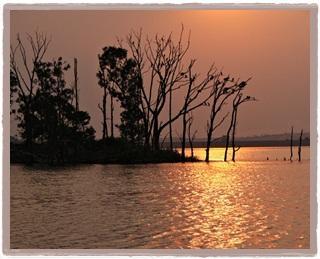 Rietvlei Nature Reserve-2